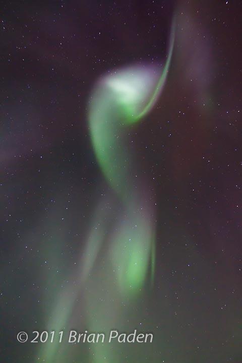 Aurora Ribbon Overhead